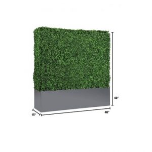 EU706 4' Boxwood Hedge